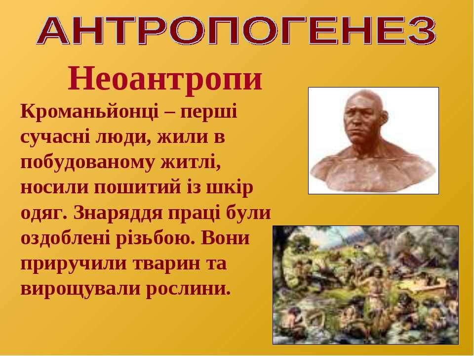Неоантропи Кроманьйонці – перші сучасні люди, жили в побудованому житлі, носи...