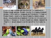 В даний час основним чинником, що викликає біологічний регрес безлічі видів, ...