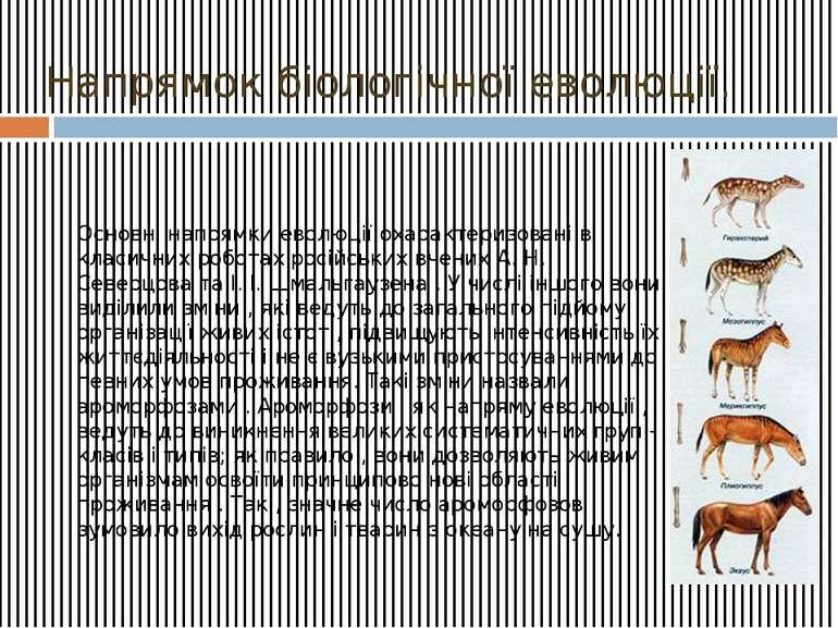 Напрямок біологічної еволюції. Основні напрямки еволюції охарактеризовані в к...
