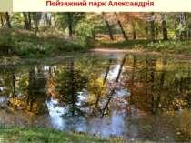 Пейзажний парк Александрія