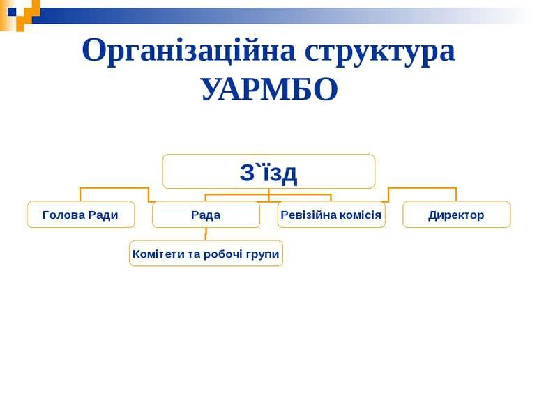 Організаційна структура УАРМБО