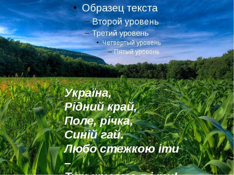 Україна, Рідний край, Поле, річка, Синій гай. Любо стежкою іти – Тут живемо я...