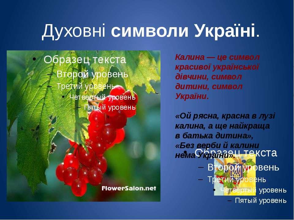 Духовні символи Україні. Калина — це символ красивої української дівчини, сим...