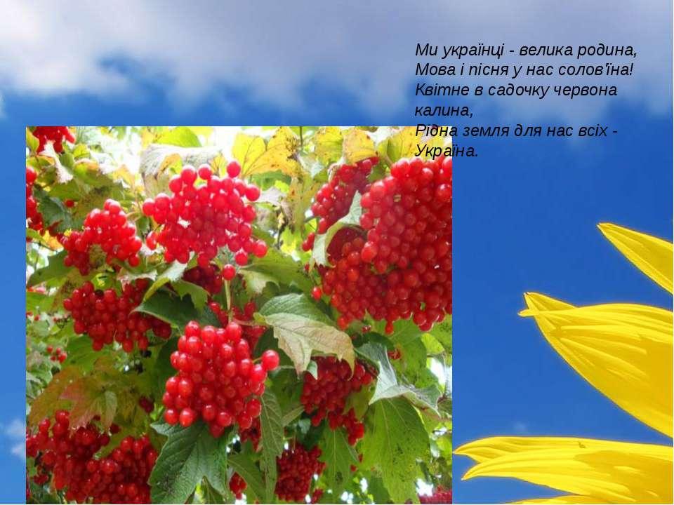 Ми українці - велика родина, Мова і пісня у нас солов'їна! Квітне в садочку ч...