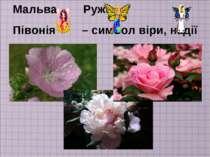 Мальва, Ружа, Півонія – символ віри, надії і любові.