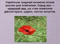 Українська традиція визначає кілька рослин для освячення. Серед них — червони...