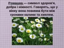 Ромашка — символ здоров'я, добра і ніжності. Говорять, що у вінку вона повинн...