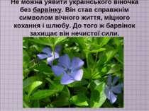 Не можна уявити українського віночка без барвінку. Він став справжнім символо...