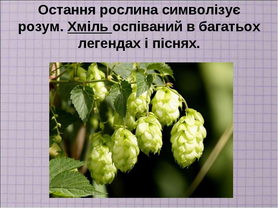 Остання рослина символізує розум. Хміль оспіваний в багатьох легендах і піснях.
