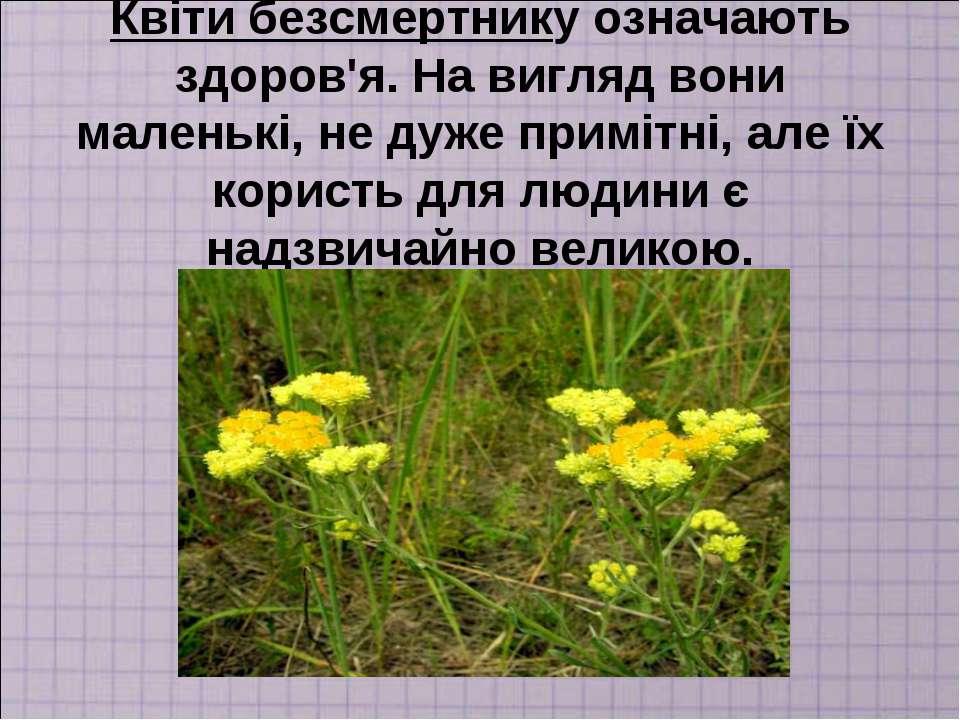 Квіти безсмертнику означають здоров'я. На вигляд вони маленькі, не дуже примі...