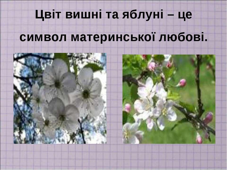 Цвіт вишні та яблуні – це символ материнської любові.
