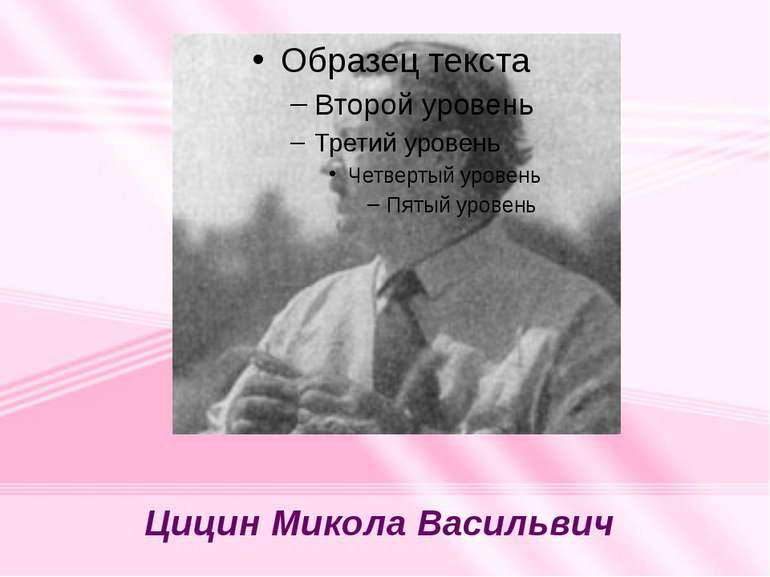 Цицин Микола Васильвич