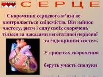 Скорочення серцевого м'яза не контролюється свідомістю. Він змінює частоту, р...