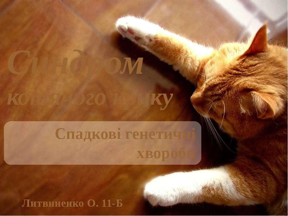 Синдром котячого крику Спадкові генетичні хвороби Литвиненко О. 11-Б