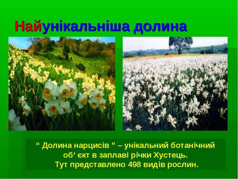 """Найунікальніша долина """" Долина нарцисів """" – унікальний ботанічний об' єкт в з..."""