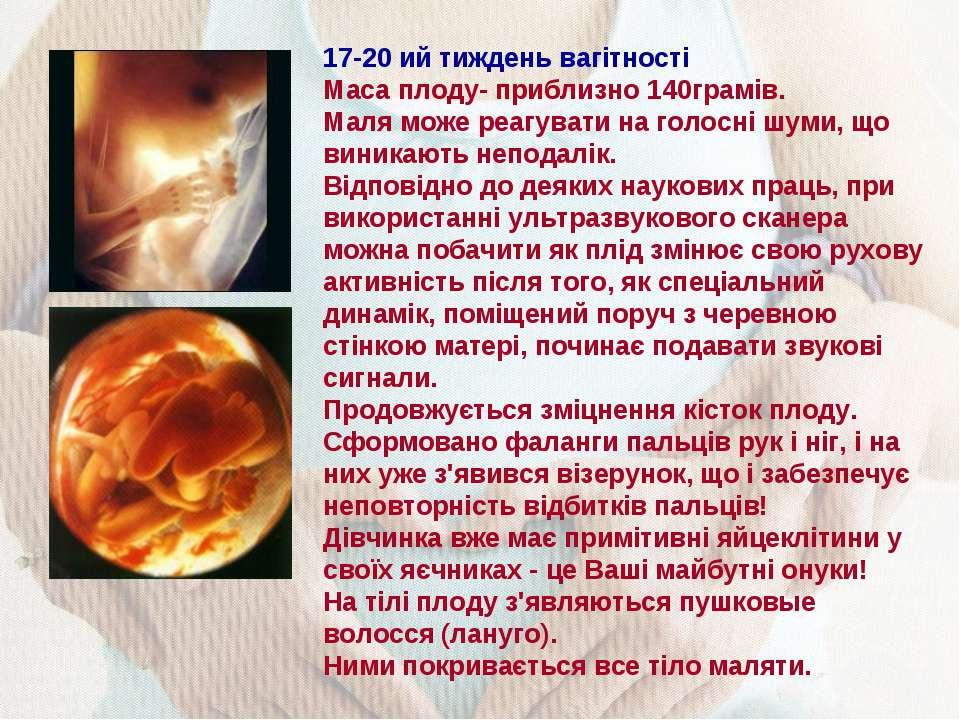 17-20 ий тиждень вагітності Маса плоду- приблизно 140грамів. Маля може реагув...