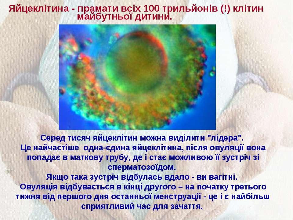 Яйцеклітина - прамати всіх 100 трильйонів (!) клітин майбутньої дитини. Серед...