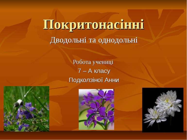 Покритонасінні Дводольні та однодольні Робота учениці 7 – А класу Подколзіної...