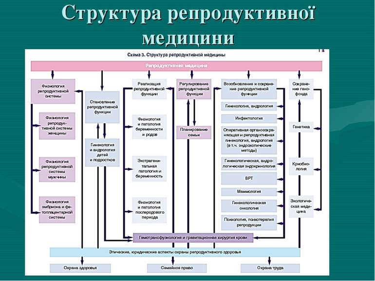 Структура репродуктивної медицини