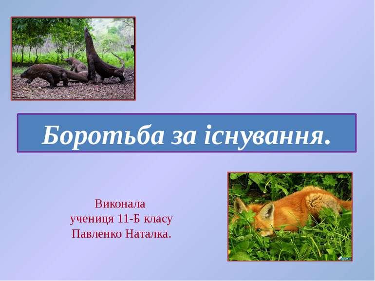 Виконала учениця 11-Б класу Павленко Наталка. Боротьба за існування.