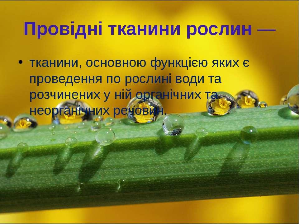 Провідні тканини рослин— тканини, основною функцією яких є проведення по рос...