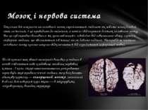 Токсична діяалкоголюна головний мозок сприймається людиною як нібито нешкід...