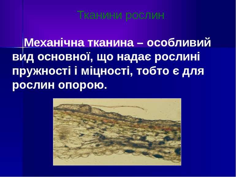 Тканини рослин Механічна тканина – особливий вид основної, що надає рослині п...