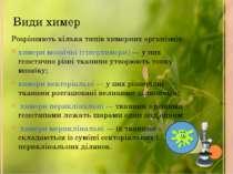 Види химер Розрізняють кілька типів химерних організмів: химери мозаїчні (гіп...