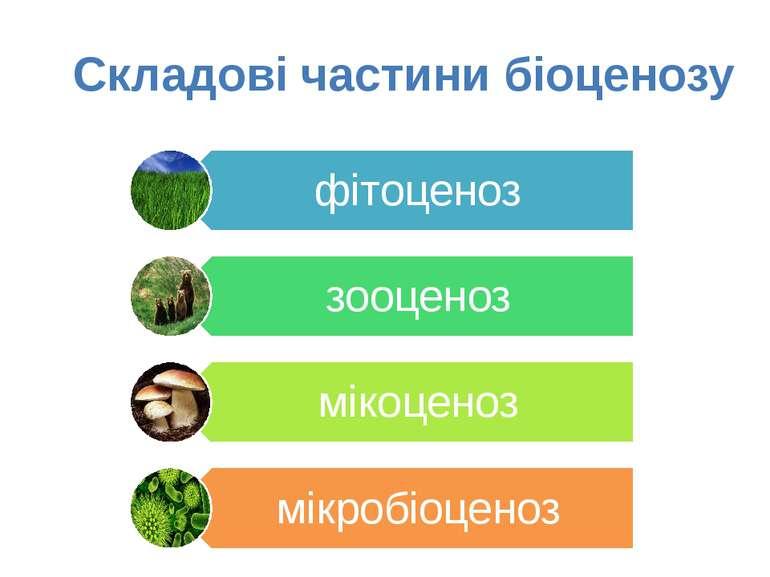 Складові частини біоценозу