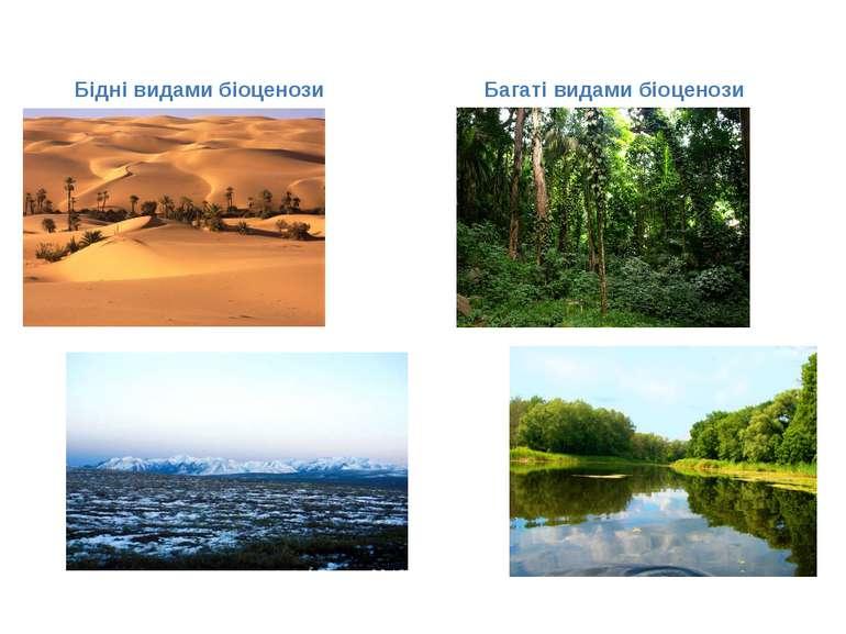 Бідні видами біоценози Багаті видами біоценози