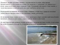Діяльність людини негативно впливає і на різноманітні водойми, забруднення пр...