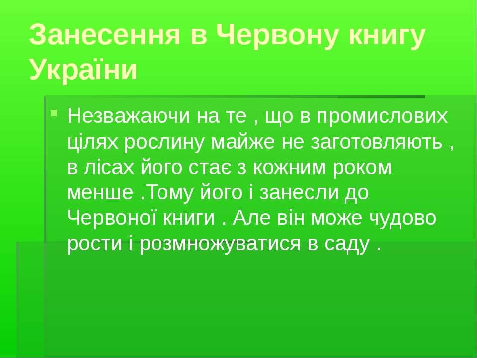 Занесення в Червону книгу України Незважаючи на те , що в промислових цілях р...