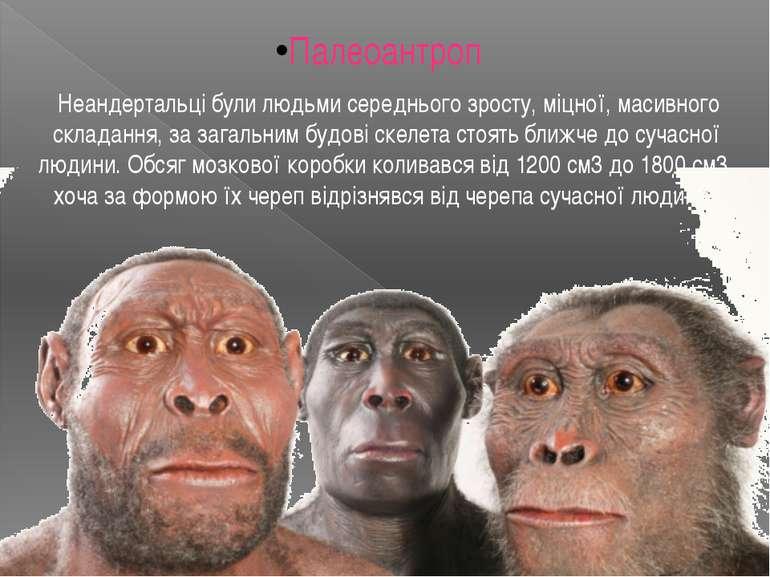 Палеоантроп Неандертальці були людьми середнього зросту, міцної, масивного ск...