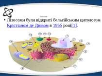 Лізосома Лізосоми були відкриті бельгійським цитологомКрістіаном де Дювомв1...