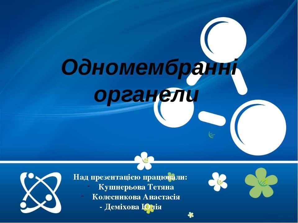 Над презентацією працювали: Кушнерьова Тетяна Колесникова Анастасія - Деміхов...