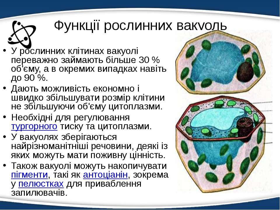 Функції рослинних вакуоль У рослинних клітинах вакуолі переважно займають біл...