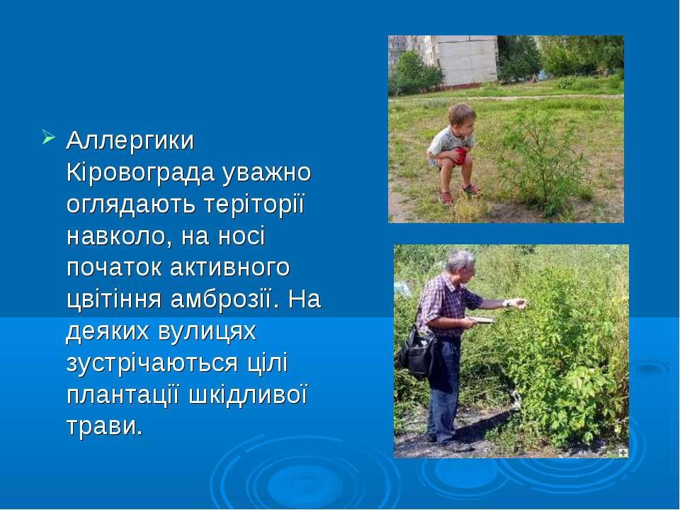 Аллергики Кіровограда уважно оглядають теріторії навколо, на носі початок акт...
