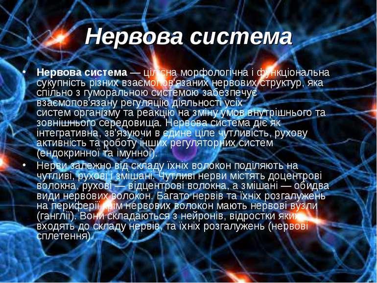 Нервова система Нервова система— ціліснаморфологічнаі функціональна сукупн...
