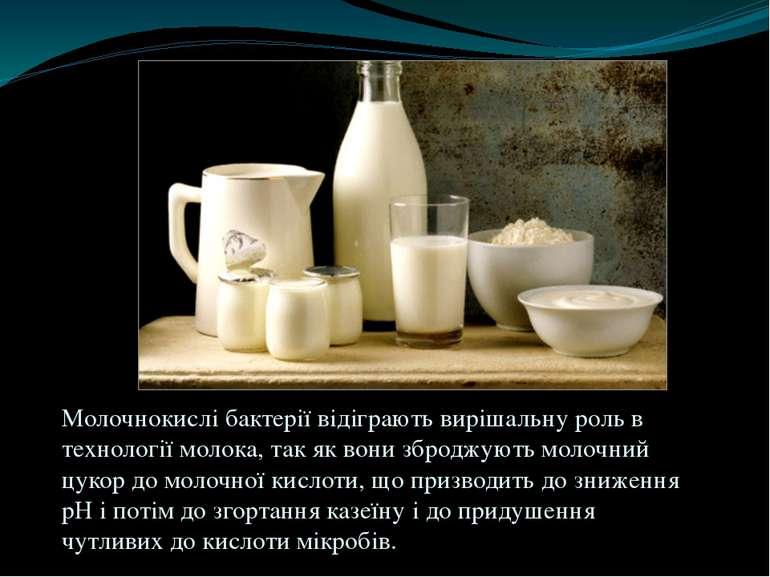 Молочнокислі бактерії відіграють вирішальну роль в технології молока, так як ...