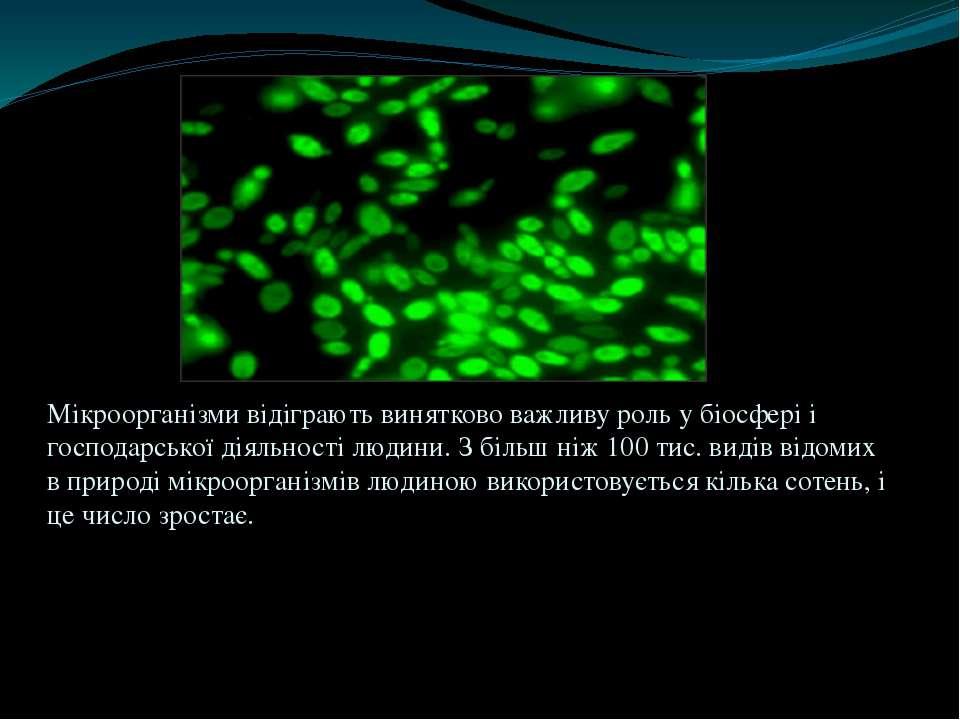 Мікроорганізми відіграють винятково важливу роль у біосфері і господарської д...