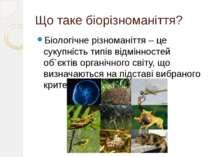 Що таке біорізноманіття? Біологічне різноманіття – це сукупність типів відмін...