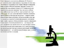 Вчені стверджують, що протягом найближчих 20–30 років че- рез техногенні змін...