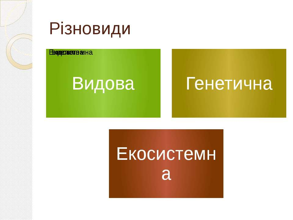 Різновиди