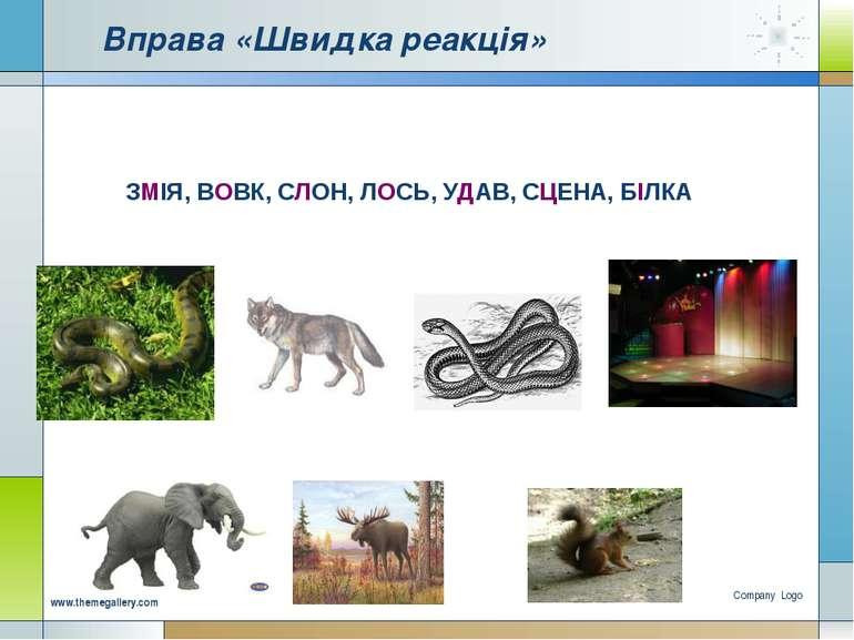 Company Logo www.themegallery.com Вправа «Швидка реакція» ЗМІЯ, ВОВК, СЛОН, Л...