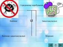 Завантажувальні Записують себе або в завантажувальний сектор диска (bootceктo...