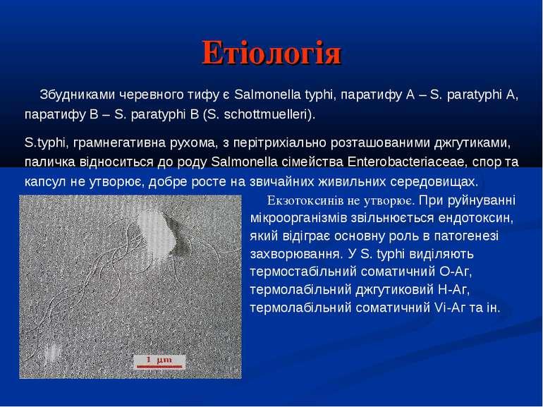 Етіологія Екзотоксинів не утворює. При руйнуванні мікроорганізмів звільнюєтьс...
