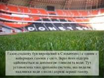 Газон стадіону був вирощений в Словаччині і є одним з найкращих газонів у сві...