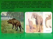 У палеоцені відбувається розквіт примітивних ссавців: хижаків — креодонтів, к...