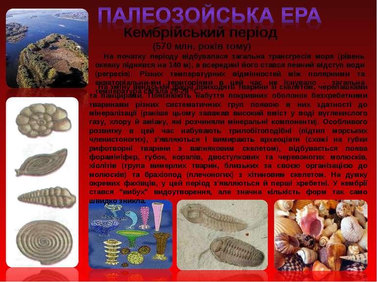 Кембрійський період (570 млн. років тому) На початку періоду відбувалася зага...