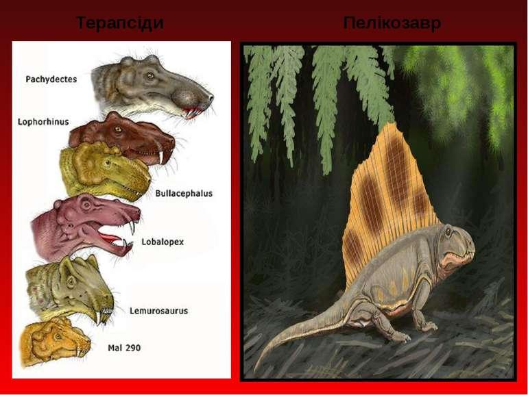 Терапсіди Пелікозавр